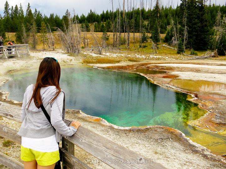 Yellowstone 4 SheenaLovesSunsets.com-min