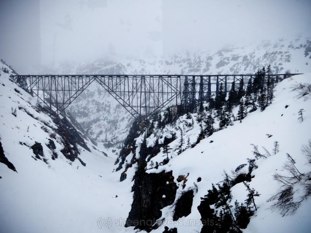 Alaska Cover-min